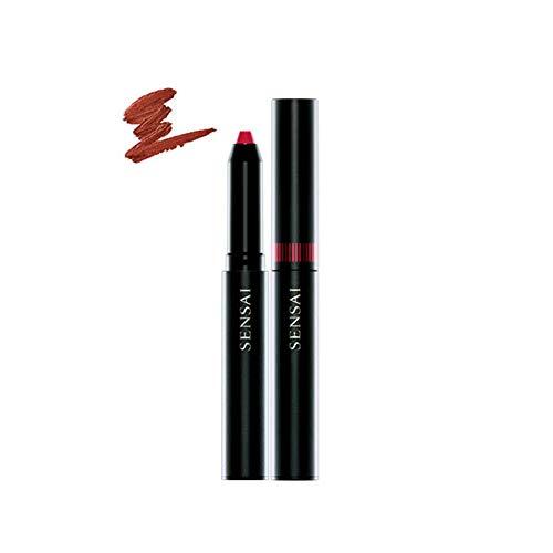 Kanebo Silky Design Rouge Nummer DR04, 1er Pack (1 x 12 g)