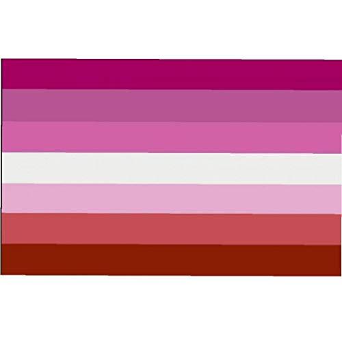 BYFRI Lesbian Pride Flag Lesbian Geschenke | lichtbeständige Farbstoff für Vivid Color 100% Super-Polyester Material -Complete Set Stolz-Fahne 3 * 5 ft