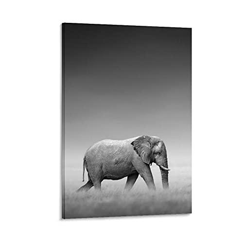 Lienzo decorativo para pared con diseño de elefante blanco y negro y blanco en el pie, 30 x 45 cm