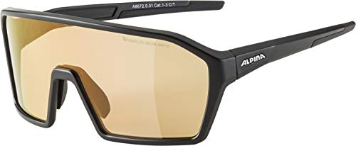 ALPINA Unisex- Erwachsene, RAM Q-LITE V Sportbrille, black matt, One Size