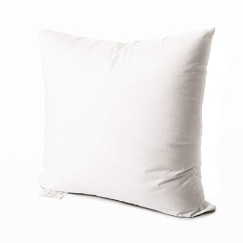 Edow Luxury Throw Pillow Insert, Soft Fluffy Down Alternative Polyester Square Form Decorative Pillow Insert,Sham Stuffer,Cotton Cover for Sofa, Couch,Bed and Car. (White, 12x12)