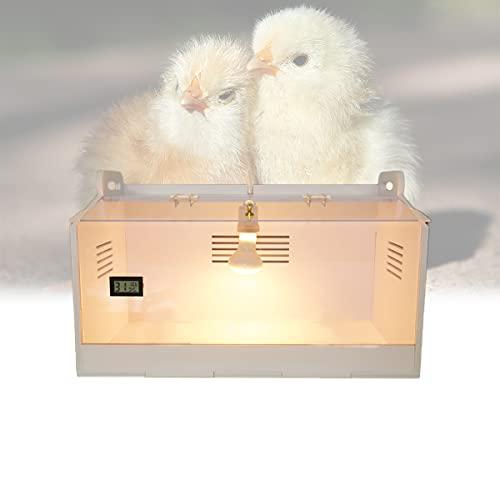 YCRD Brutinkubator, Vollautomatische Brutmaschine, Das Glas kann eingesehen Werden, Wärmeableitungsfenster ist atmungsaktiv und Wird für Vögel, Geflügel (50 * 30 * 30)
