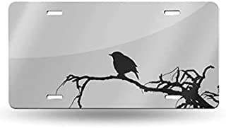 BlingShine Bird Sparrow Icon Sketch Cartoon Wallpaper USA License Plate Frame Funny Vanity Tag Decorative Front Licese Plate Humor for Women for Men