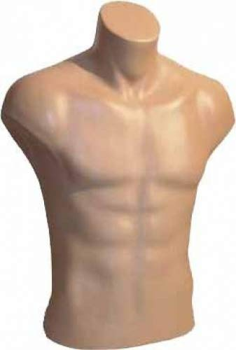 Male Torso Dress Form Mannequin Display Bust Nude (#5027) by Only Mannequins®