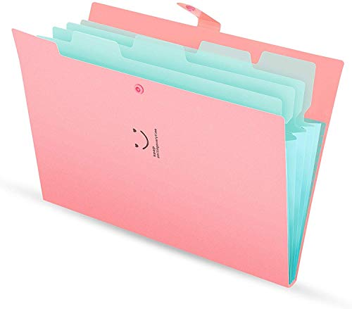 Skydue Letter A4 Paper Expanding File Folder Pockets Accordion Document Organizer (Pink)