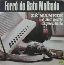 FORRÓ DO RATO MOLHADO, 1981 (NACIONAL) [LP]