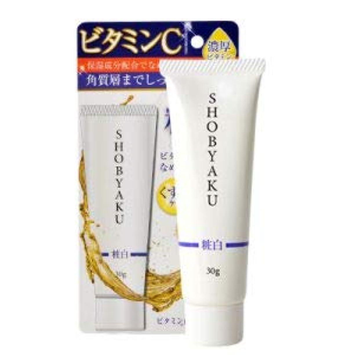女王ハーフブラザービピット 粧白ビタミン配合クリーム W90×D24×H173mm
