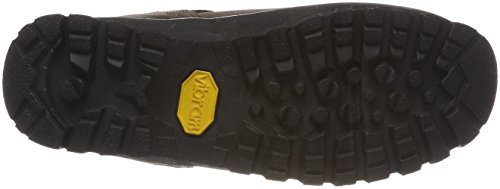 Meindl Borneo Lady 2 MFS (XL), Chaussures de Randonnée Hautes Femme, Marron (Dunkelbraun/Nougat 46), 40 EU