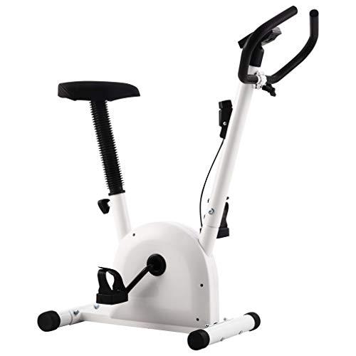 Ausla Bicicleta estática elíptica para fitness, control de resistencia multiniveles, con pantalla LCD y un sillín ajustable, volante de 2 kg, peso máximo soportado 100 kg