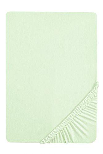 biberna 0077144 Spannbetttuch Feinjersey (Matratzenhöhe max. 22 cm) 1x 140x200 cm > 160x200 cm, mint