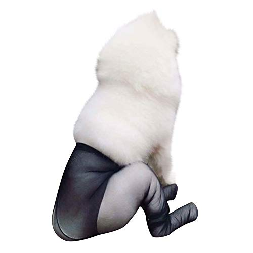 (80% OFF) Dog Stockings  $8.56 – Coupon Code