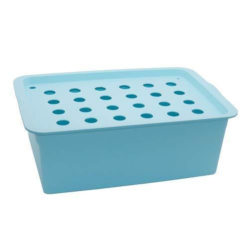 HCHD 24 Hoyos Sitio de la Planta hidropónica Kit Jardín Macetas Macetas de plántulas macetas de Cultivo Cubierta Caja Kit de Crecimiento de la Burbuja Nursery Pots 1 Set (Color : Blue)
