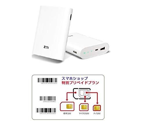 キャリア SIM 超大容量 prepaid DATA SIM (300GBプラン, 12ヶ月,SIMのみ)