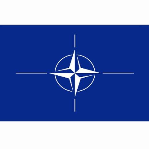 NATO BAND - DIM 1 x 1,5 m - 100% polyester