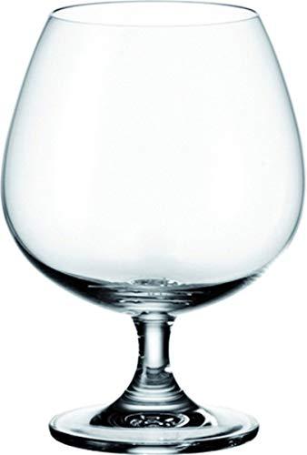 Cognac Gläser Set Cognacschwenker Weinbrand Brandy Gläser bauchig Klar 6 Stück
