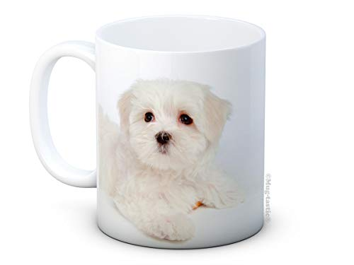 Maltese Terrier Perrito Perro Bichon - Taza De Café De Cerámica