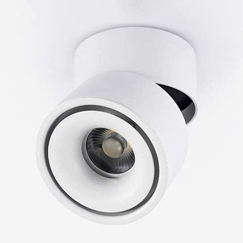 7W 10W 12W 15W LED Proyector de techo Luminaria puntual de acento montada en la superficie Ajustable 360 & deg;Iluminación puntual de pared Lámpara de pared de aluminio de 3000 K o luz puntual (Neg