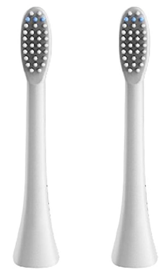 レーザヒロイッククライストチャーチ(正規品)InfinitusValue スマートトラッキング電動歯ブラシ専用替えブラシ レギュラーサイズ 2本組 ホワイト IVHB01WBR2
