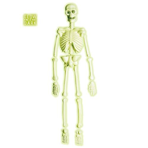 Widmann ? Squelette laboratoire 3d fluo unisex-adult, vert, Taille unique, vd-wdm5228s