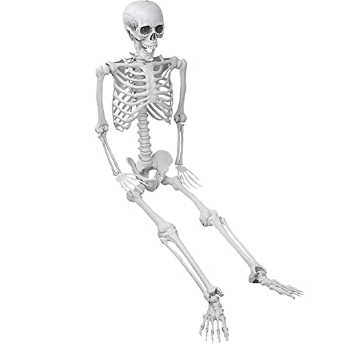 XONOR 5.4ft/165cm Halloween Skeleton - Realistic Human Skeletons Full Body Bones with Movable Joints...