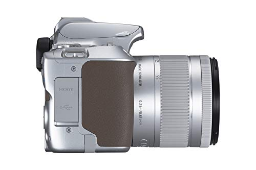 Canon EOS 250D Digitalkamera - mit Objektiv EF-S 18-55mm F4-5.6 IS STM (24, 1 Megapixel, 7, 7 cm (3 Zoll) Vari-Angle Display, APS-C-Sensor, 4K, Full-HD, DIGIC 8, WLAN, Bluetooth), silber
