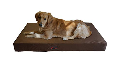 PetBed4Less Deluxe Orthopedic Memory Foam Dog Bed Pet Pad with Chew Resistant NOT chew-Proof and Removable Zipper Cover + Free Waterproof Dog Bed Liner [Replacement Zipper Covers Available]