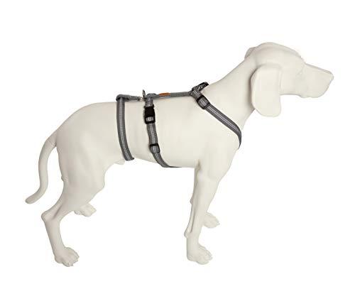 Feltmann Das Original - NoExit Hundegeschirr ® - Zweiter Bauchgurt abnehmbar, Sicherheitsgeschirr für Pflegehunde, Panikgeschirr, No Escape, Super Soft, Silber, Bauchumfang 55-75 cm, 20 mm Bandbreite