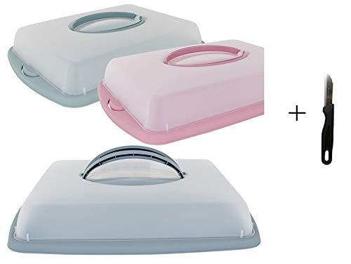 Vani Tortenbehälter flach + gratis Solinger Messer -Kuchenglocke Tortenglocke Tortenhaube Kuchenbehälter Tortenbehälter Muffinbehälter Transportbox
