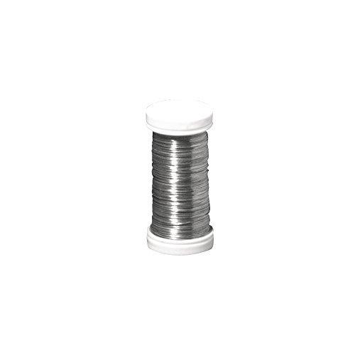 Rayher 2400121 Filo Metallico per Fiori, Diametro 0.35 mm, Bobina Da 100 m, Filo in Ferro, Privo di Nichel, per Composizioni Floreali e Lavori Creativi, Platino