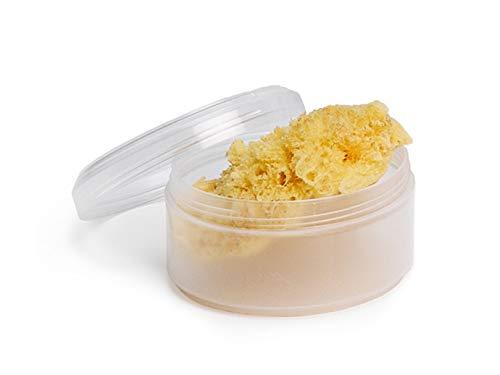 Suavinex - Esponja Natural del Mar para bebé + Caja. Esponja de bebé 100% Natural