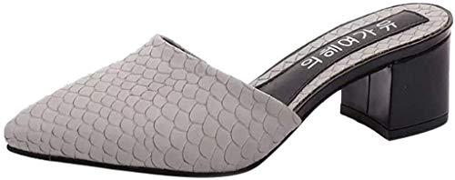 LCFF Chanclas Zapatos de Punta en Punta Mujeres Sandalias de los Deslizadores del Verano del Resorte del resbalón no Forma Las Sandalias de tacón bajo Sexy (Color : Gray, Size : UK5.5-38 EU)