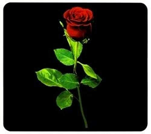 MULTI-Platte BACCARA-ROSE