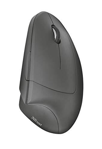 31Dyis179 L. SL500