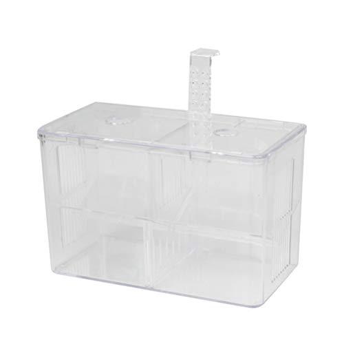 Balacoo Zuchttanks Aquarium Zuchtbox Fisch Inkubator Isolation Box Brutkasten Ablaichkasten Aufzuchtbecken Ablaichbehälter Fischzucht Boxen mit Haken