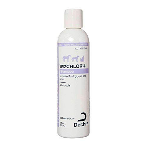 Dechra TrizCHLOR 4 Shampoo for Dogs, Cats & Horses (8oz)