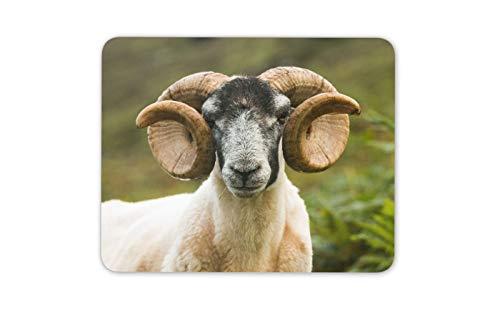Scottish Blackface-Schafe Mauspad Pad - Skye Schottland Farm Computer-Geschenk # 12497