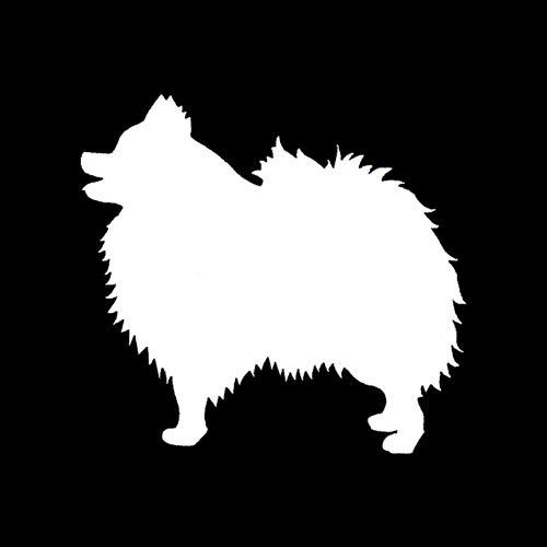Hhuycvff vwuig 14 X 13CM Pomeranian Dog Autoaufkleber Spezies Tiere Haustiere Hunde Motorrad Auto Aufkleber und Abziehbilder