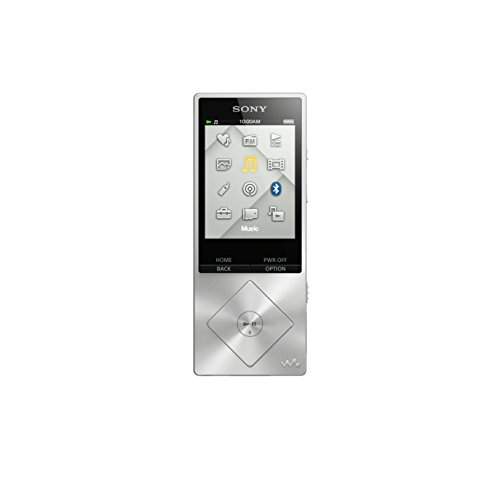 Sony Walkman NWZA17SLV 64 GB Hi-Res Digital Music Player (Silver)