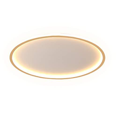 SENFEISM Luz de Techo Luces de Techo LED Simples para Entrada de casa Balcón Sala de Estar Dormitorio Lámparas de Interior Iluminación Luces de Techo