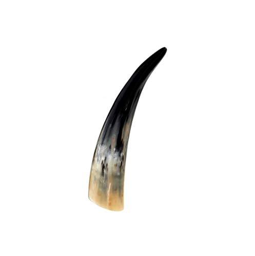 Brillibrum Design Echtes Kuhhorn 31cm bis 40cm Länge Rinderhörner poliert Stier Horn Trophäe Trinkhorn