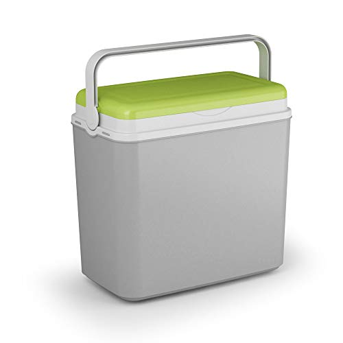 ADRIATIC - Nevera de 24 litros para camping, playa, almuerzo, pícnic, comida aislada + 2 paquetes de hielo (caja refrigerante, verde y gris)