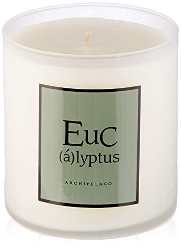 ARCHIPELAGO Bougie Parfumée de Maison Eucalyptus, 400 g