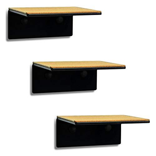 trelixx® sehr kleine Katzenleiter aus schwarzem Acrylglas | dreistufig | 14x15cm | für kleine Katzen bis 5kg | mit Korkauflagen | leichte Montage | großartiges Design | Aufstiegshilfe