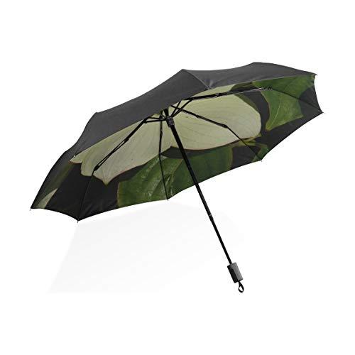 Großer Regenschirm Frauen Hartriegel...