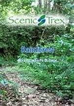 Scenic Trex Rainforest