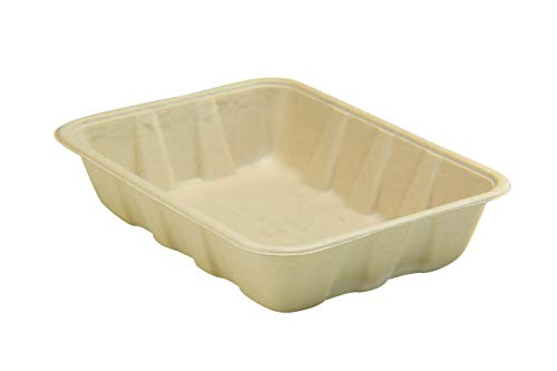 biodegradable tray - 2