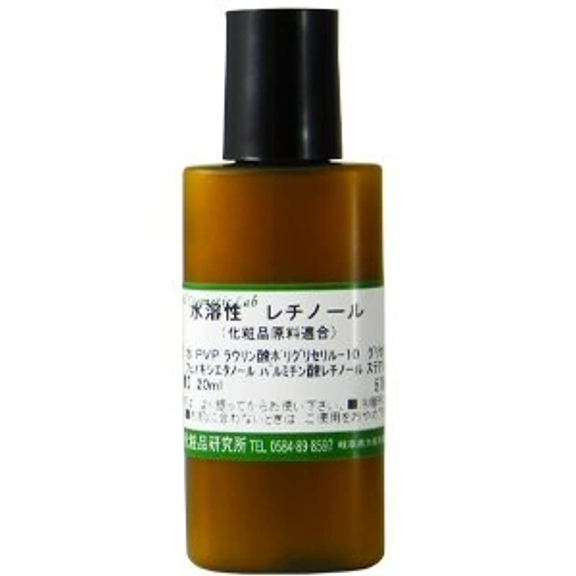 学習者ずっとプリーツ水溶性レチノール 20ml 【手作り化粧品原料】