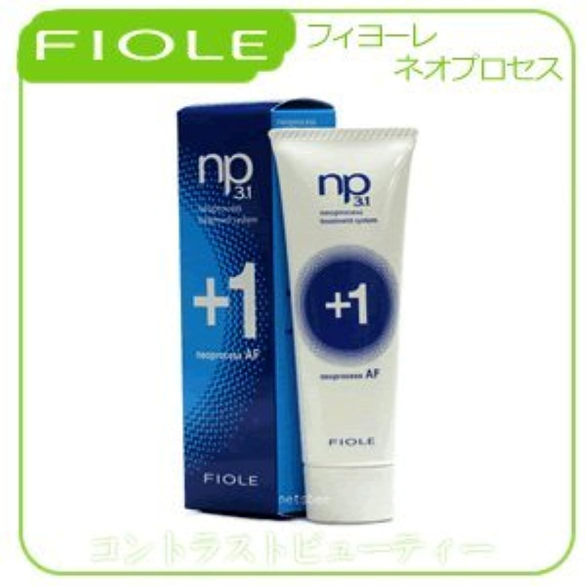 古くなった穿孔するシャンプー【X2個セット】 フィヨーレ NP3.1 ネオプロセス AFプラス1 240g FIOLE ネオプロセス