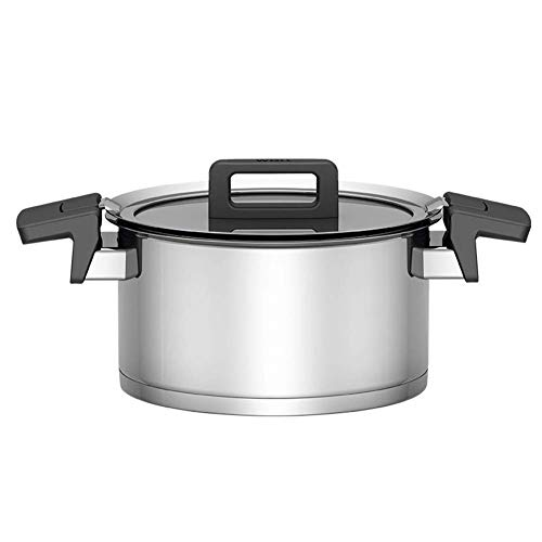 L.TSN Pot à ragoût - Fond Composite à Trois Couches en Acier Inoxydable 304 pour Toutes Les Sources de Chaleur de 20 cm de diamètre (Couleur: A Taille: 20 cm de diamètre)