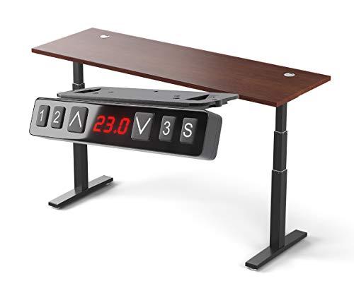 Direction Electric 72-Inch Height Adjustable Standing Desk, Dual Motor Sit Stand Rising Desk (Black Frame, Walnut Top)